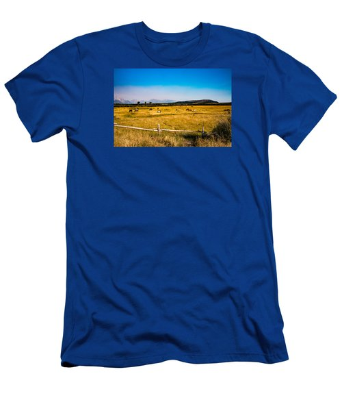Men's T-Shirt (Slim Fit) featuring the photograph Grazing Horses by Cathy Donohoue