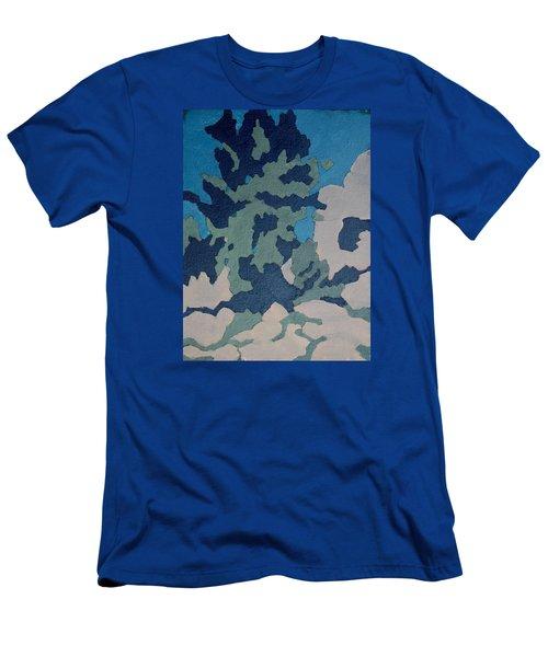 Hidden Valley Abstraction Men's T-Shirt (Slim Fit) by Richard Willson