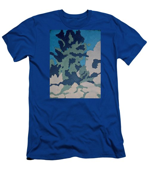 Hidden Valley Abstraction Men's T-Shirt (Athletic Fit)