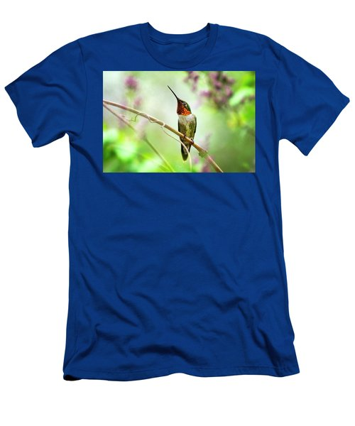 Hummingbird Looking For Love Men's T-Shirt (Athletic Fit)