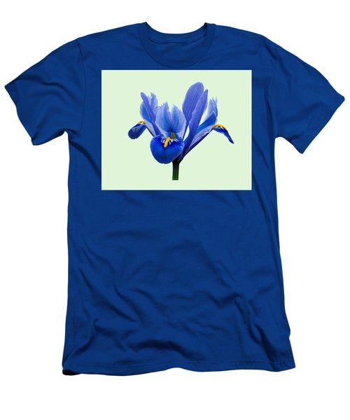 Iris Reticulata, Green Background Men's T-Shirt (Slim Fit) by Paul Gulliver