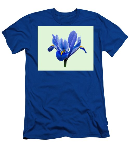 Iris Reticulata, Green Background Men's T-Shirt (Athletic Fit)