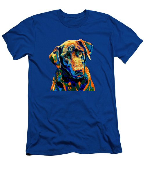 Labrador Retriever Of Many Colors Iv Men's T-Shirt (Athletic Fit)