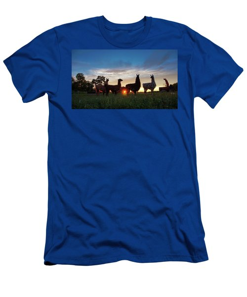 Llamas At Sunset Men's T-Shirt (Athletic Fit)
