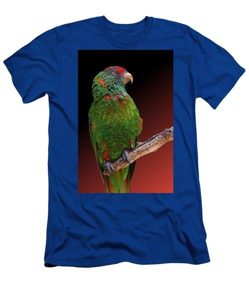 Lorikeet Portrait Men's T-Shirt (Athletic Fit)