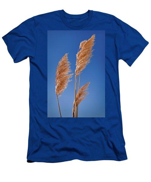 Midewin National Tallgrass Prairie Men's T-Shirt (Athletic Fit)