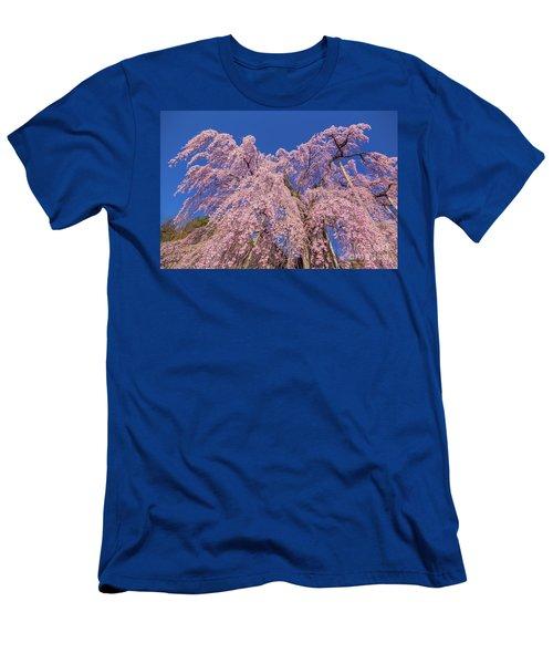 Men's T-Shirt (Athletic Fit) featuring the photograph Miharu Takizakura Weeping Cherry30 by Tatsuya Atarashi