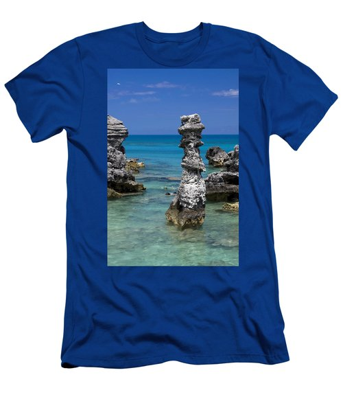 Ocean Rock Formations Men's T-Shirt (Athletic Fit)