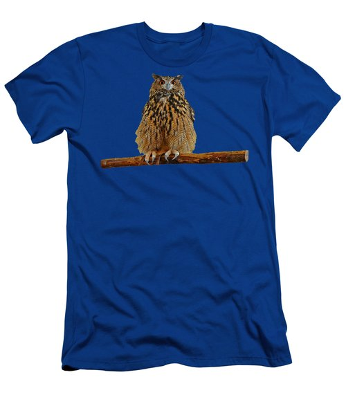 Owl Art Men's T-Shirt (Athletic Fit)