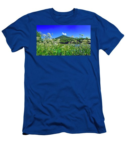 Queen Anne's Lace, Peaks Of Otter  Men's T-Shirt (Athletic Fit)