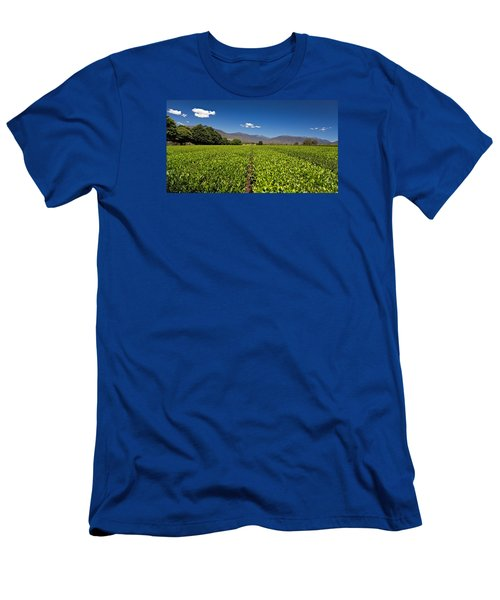 Ready For Harvest Men's T-Shirt (Slim Fit) by Mark Lucey
