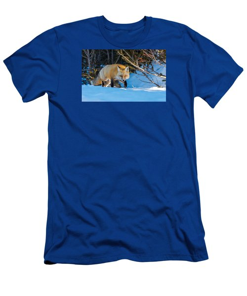Men's T-Shirt (Slim Fit) featuring the photograph Red Fox In Winter Snow by Yeates Photography