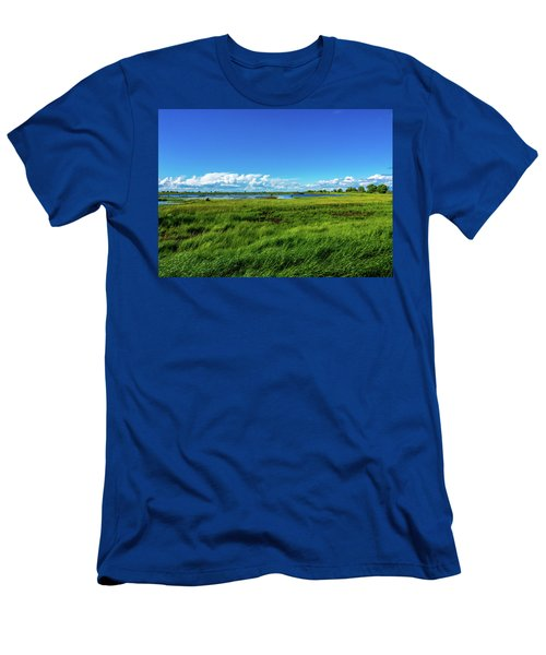 Wetlands On A Windy Spring Day Men's T-Shirt (Athletic Fit)