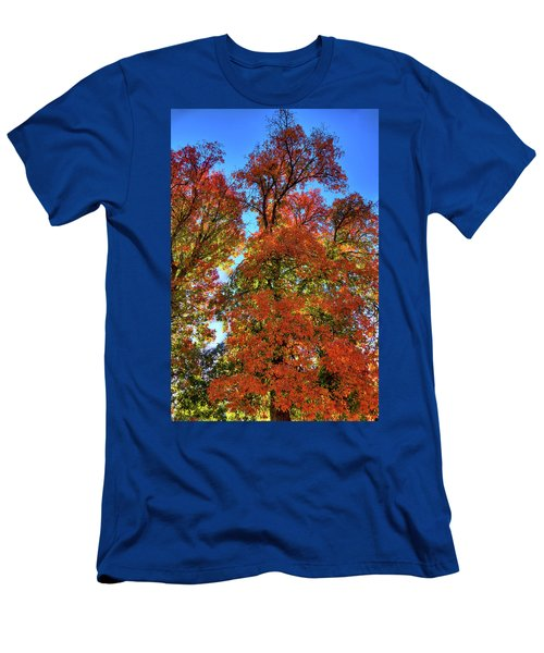 Men's T-Shirt (Athletic Fit) featuring the photograph Backlit Autumn by David Patterson