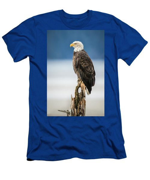Bald Eagle On Snag Men's T-Shirt (Athletic Fit)