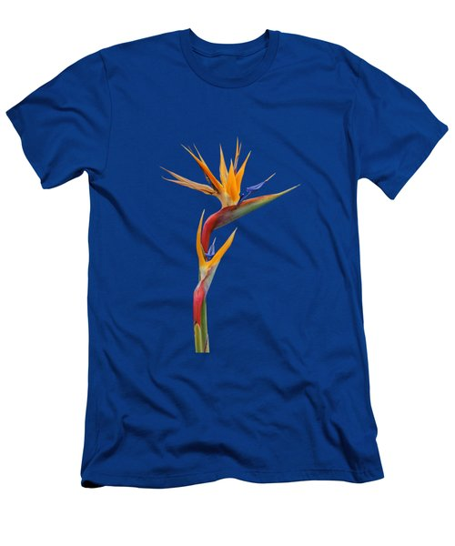 Bird Of Paradise - Flower - Transparent Men's T-Shirt (Athletic Fit)