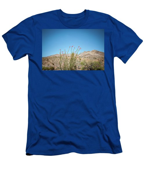 Blooming Ocotillo Men's T-Shirt (Athletic Fit)