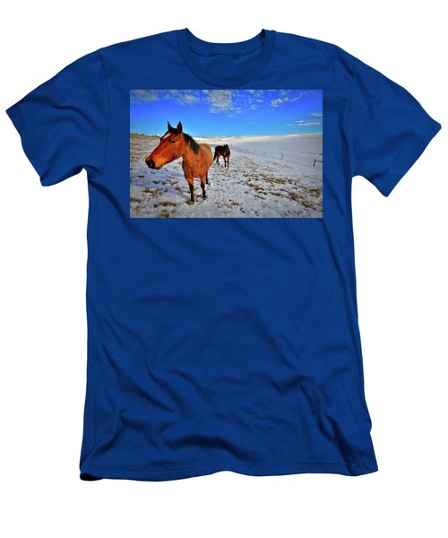 Men's T-Shirt (Athletic Fit) featuring the photograph Geldings In The Snow by David Patterson
