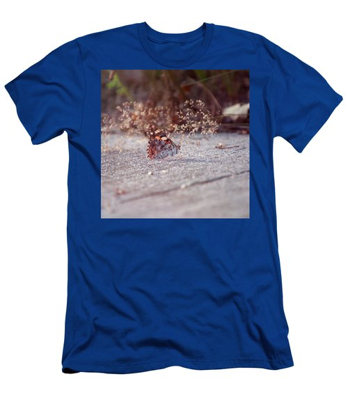 Painted Lady - Vanessa Cardui Men's T-Shirt (Athletic Fit)