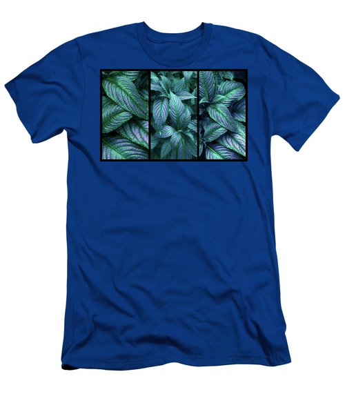 Persian Shield Triptych Men's T-Shirt (Athletic Fit)