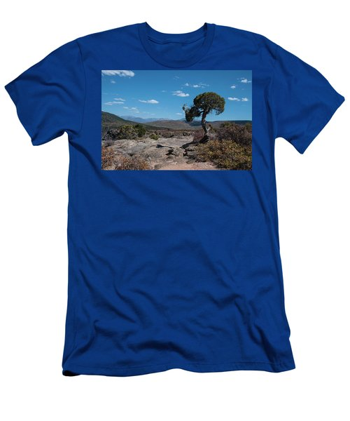 Pinyon Pine With North Rim In Background Black Canyon Of The Gunnison Men's T-Shirt (Athletic Fit)