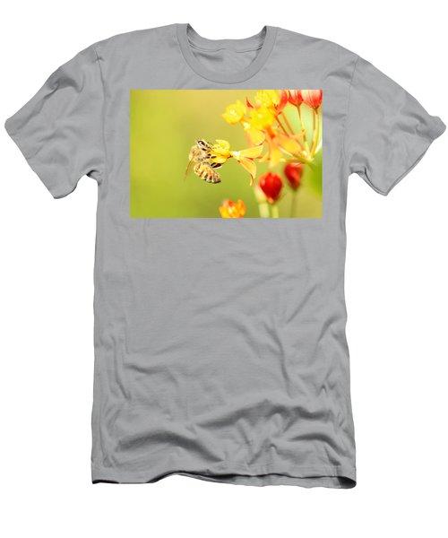 Bee On Milkweed Men's T-Shirt (Athletic Fit)