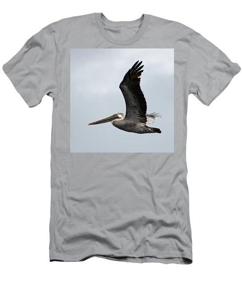 Brown Pelican In Flight Men's T-Shirt (Athletic Fit)