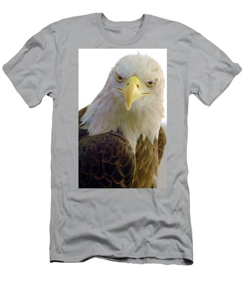 Bald Eagle Men's T-Shirt (Slim Fit) by Steve Archbold