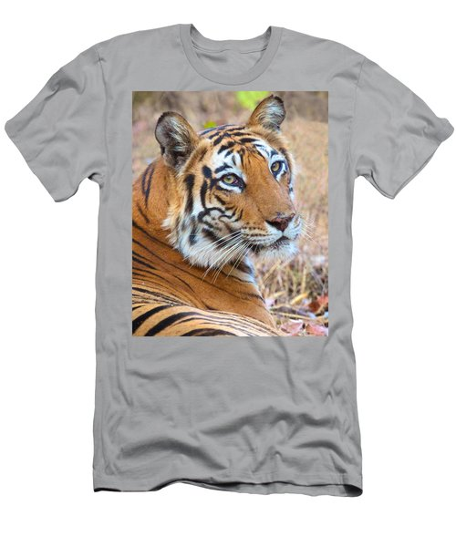 Bandhavgarh Tigeress Men's T-Shirt (Athletic Fit)