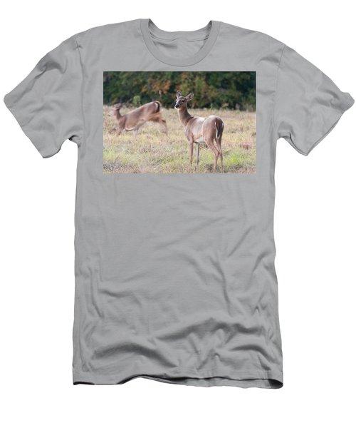 Deer At Paynes Prairie Men's T-Shirt (Athletic Fit)