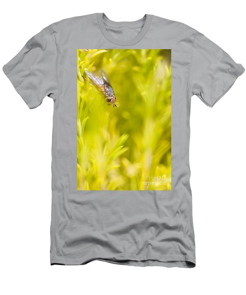 Fly Insect In Amongst A Flurry Of Yellow Leaves Men's T-Shirt (Athletic Fit)