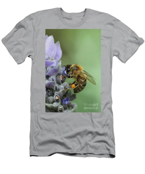 Happy Bee Men's T-Shirt (Athletic Fit)