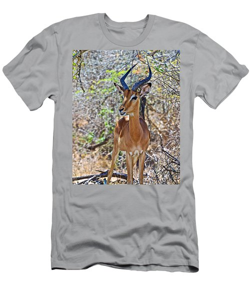 Male Impala In Kruger National Park-south Africa   Men's T-Shirt (Athletic Fit)