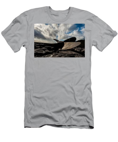 Propeller On The Beach Men's T-Shirt (Athletic Fit)