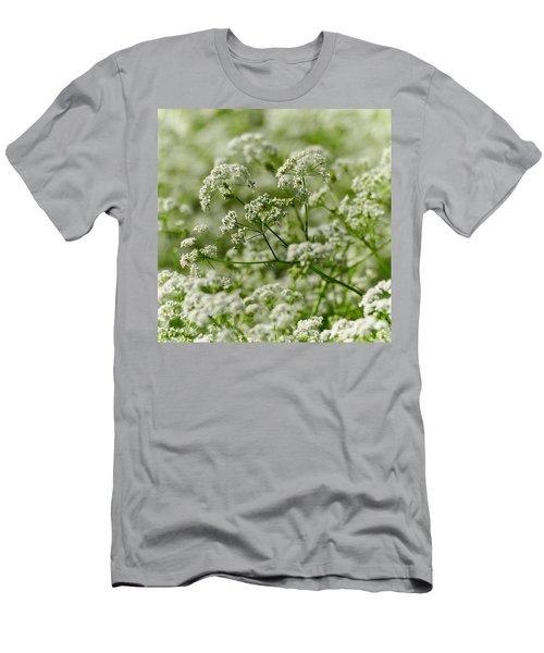 Queen Annes Lace Men's T-Shirt (Athletic Fit)