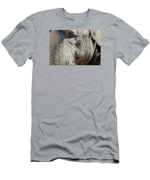 Wise One,elephant  Men's T-Shirt (Athletic Fit)