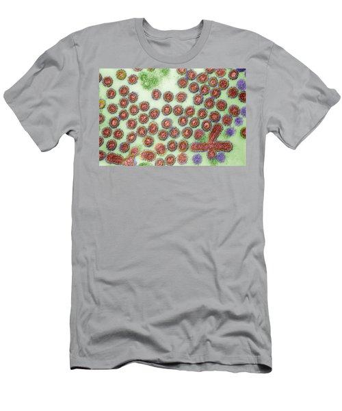 Avian Influenza, Tem Men's T-Shirt (Athletic Fit)