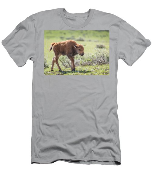 Bison Calf Men's T-Shirt (Athletic Fit)
