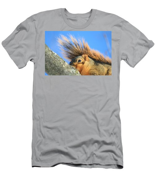 Eastern Fox Squirrel Men's T-Shirt (Athletic Fit)