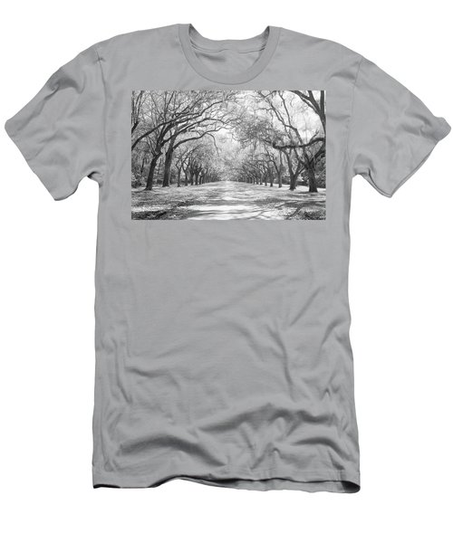 Live Oaks And Spanish Moss Wormsloe Men's T-Shirt (Athletic Fit)