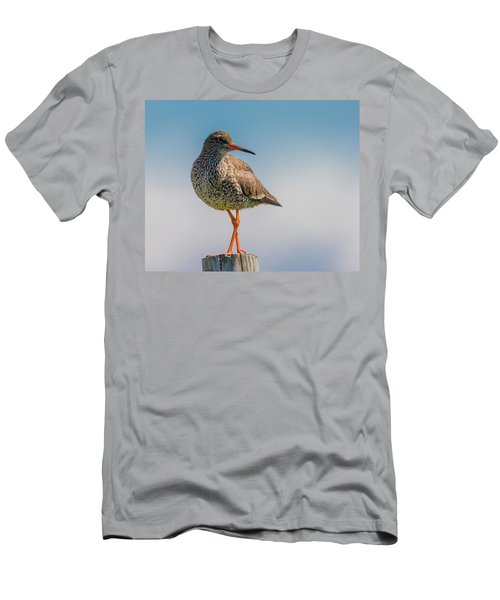 Redshank Tringa Totanus, Flatey Island Men's T-Shirt (Athletic Fit)