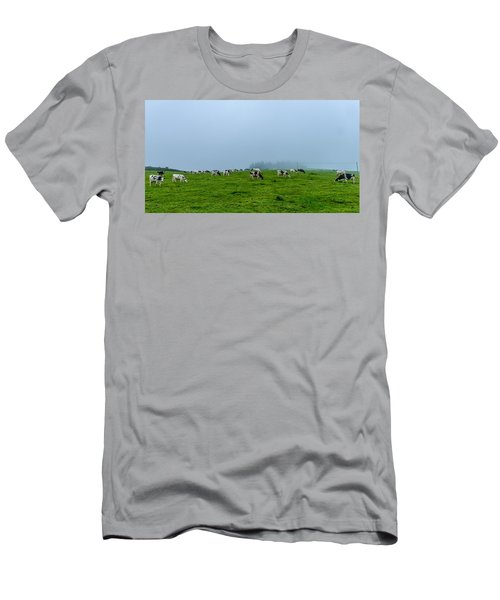 Cows In The Field Men's T-Shirt (Athletic Fit)