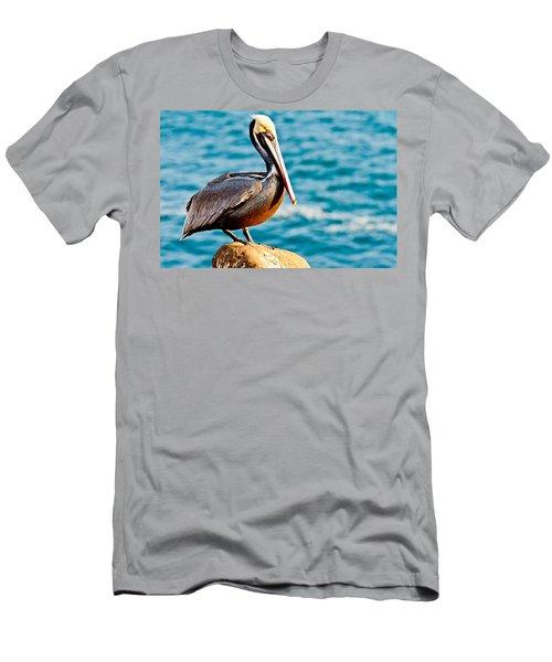 Brown Pelican Men's T-Shirt (Athletic Fit)