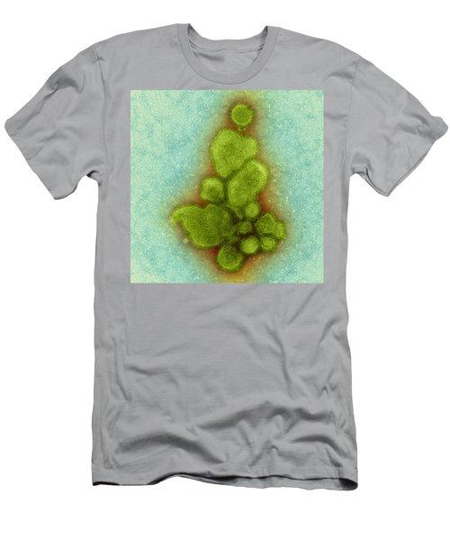 H7n9, Influenza A, Avian Flu Virus, Tem Men's T-Shirt (Athletic Fit)
