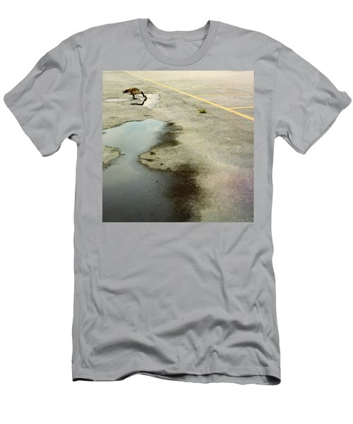 A Canada Goose Drinks From A Puddle Men's T-Shirt (Athletic Fit)
