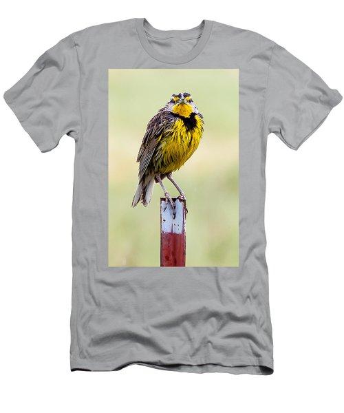A Little Wet Men's T-Shirt (Athletic Fit)