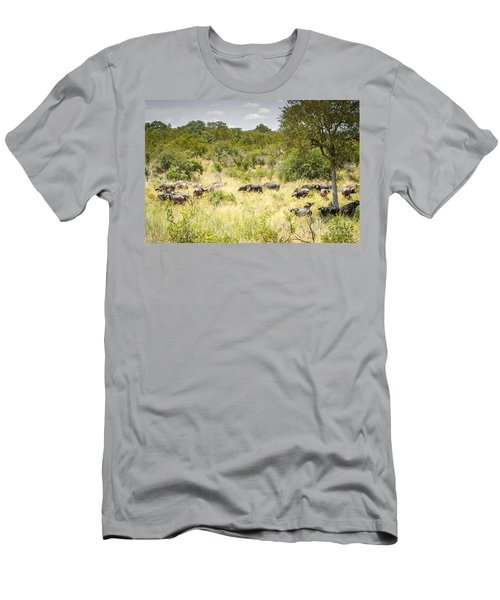 African Buffalo Herd Men's T-Shirt (Athletic Fit)