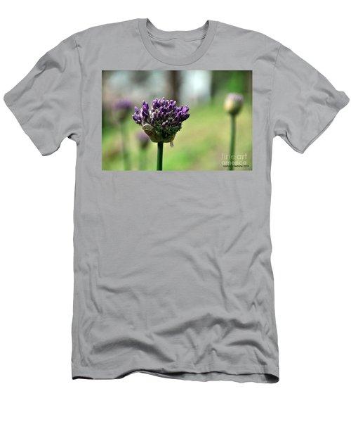 Allium Globe Budding Men's T-Shirt (Athletic Fit)