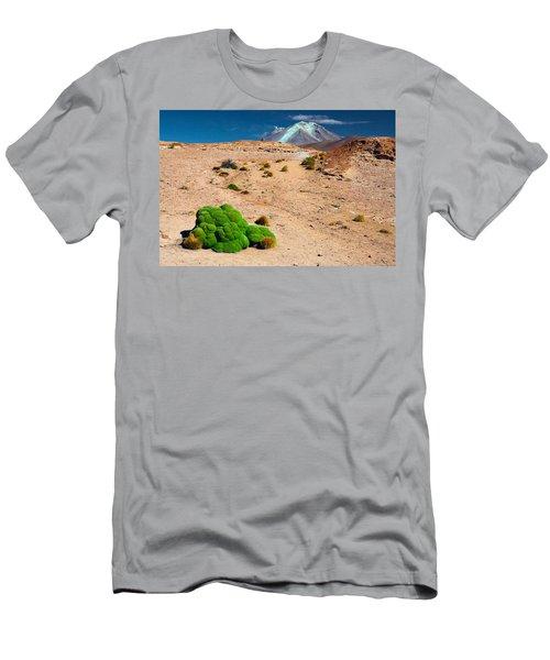 Altiplano Landscape Men's T-Shirt (Athletic Fit)