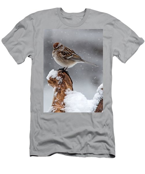 American Tree Sparrow In Snow Men's T-Shirt (Athletic Fit)